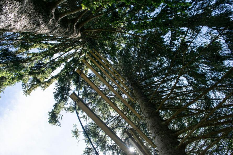 Erlebnispädagogik in der Natur – Ideen für Teamevents während der Klassenfahrt im Schwarzwald