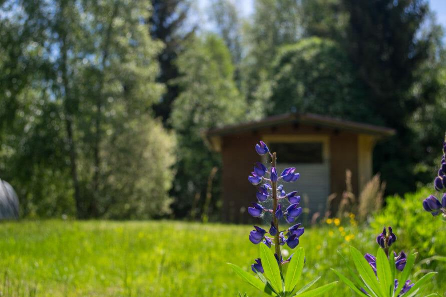 Die Boschhütte – Ein soziales Projekt